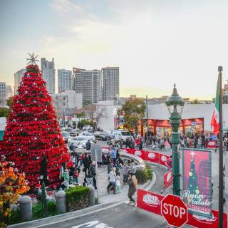 Little Christmas Italy.Visit Little Italy In San Diego Official Ca Travel Guide